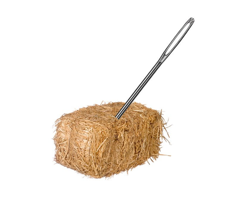 a needle in a hay stack
